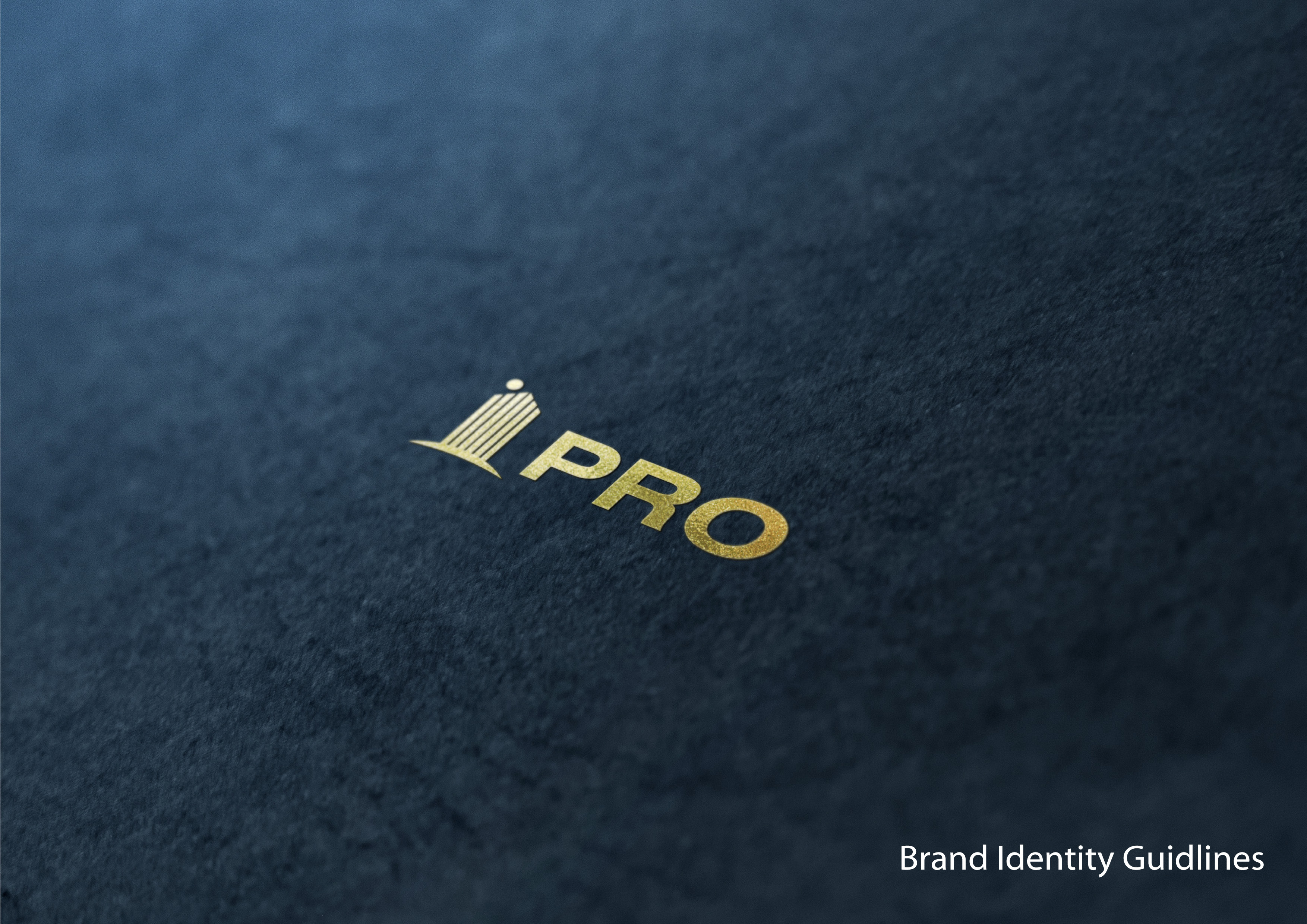 inspiring-logo-design-identity-gudilines-template-for-pro-by-capitalarts-design-and-advertising
